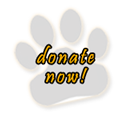 Donate to Wisconsin Big Cat Rescue & Educational Center