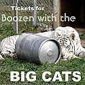 2nd Annual Boozen with the Big Cats Tickets