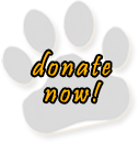 Make a donation to Wisconsin Big Cats Rescue
